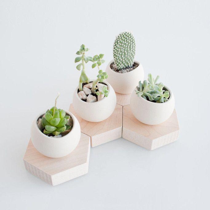 Hex Spora | Single | Pre Order #ceramic #gardening #planter