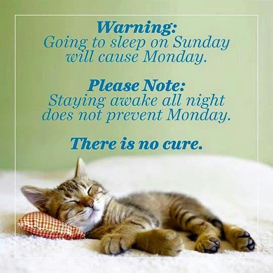 No cure-sleep a lot on a sunday