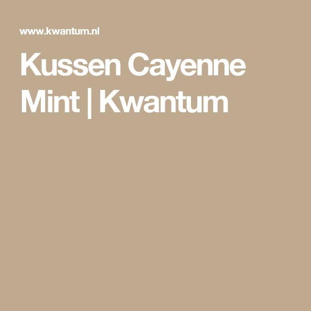 Kussen Cayenne Mint   Kwantum