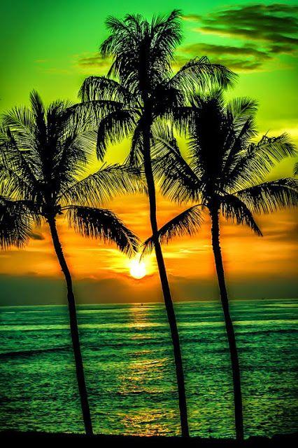Atardecer Verde Y Anaranjado Por La Playa
