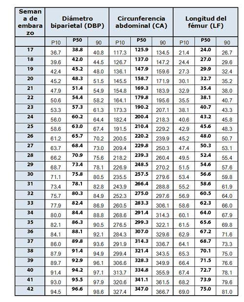Ecografía tercer trimestre embarazo:estimación del tamaño fetal
