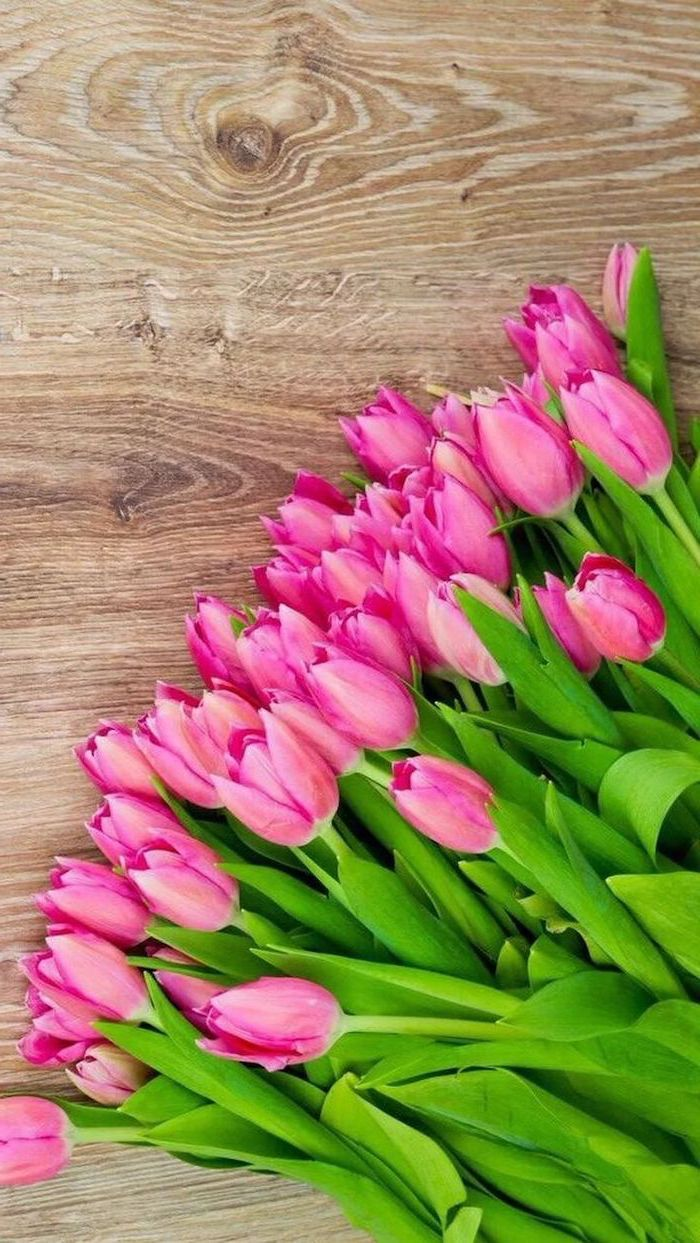 Pink Tulips Wooden Background Phone Wallpaper Happy Spring Images In 2020 Spring Wallpaper Flower Background Iphone Flower Wallpaper