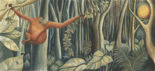 Pongo - Children's Picture Book - Jesse Hodgson Illustration