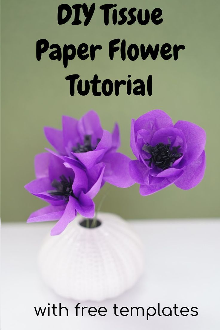 Diy Easy Anemone Paper Flower Diy Crafts Paper Flowers Diy
