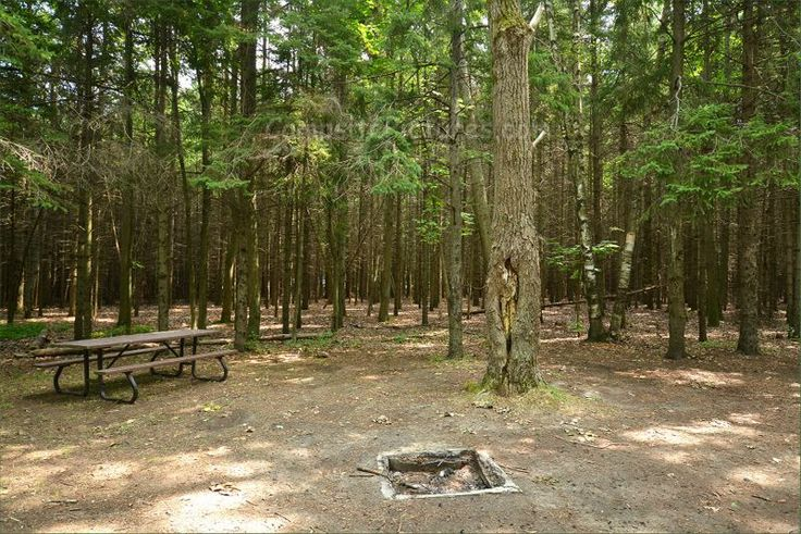 Sibbald Point Provincial Park, East Campground, Camping in Ontario Parks