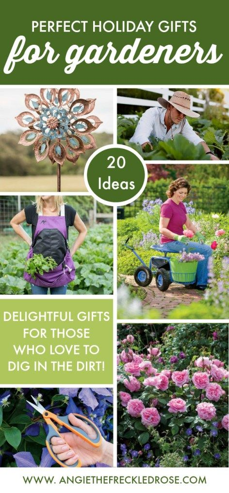 20 Perfect Holiday Gifts for Gardeners