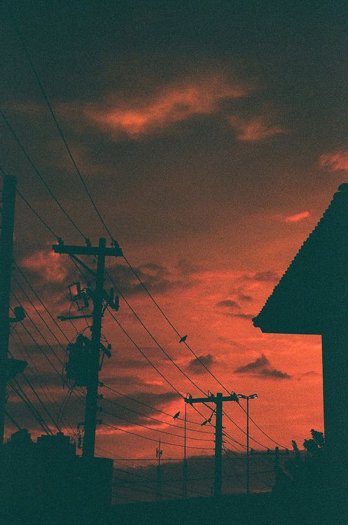 red sky, electric wires, birds clouds