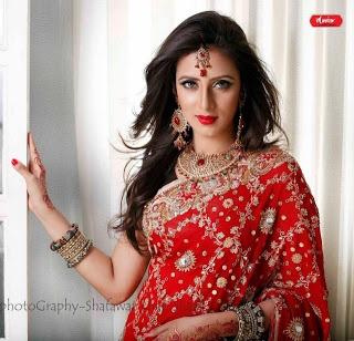 sexy saree and model