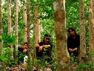 Tropical Wilderness: Teman Perjalanan