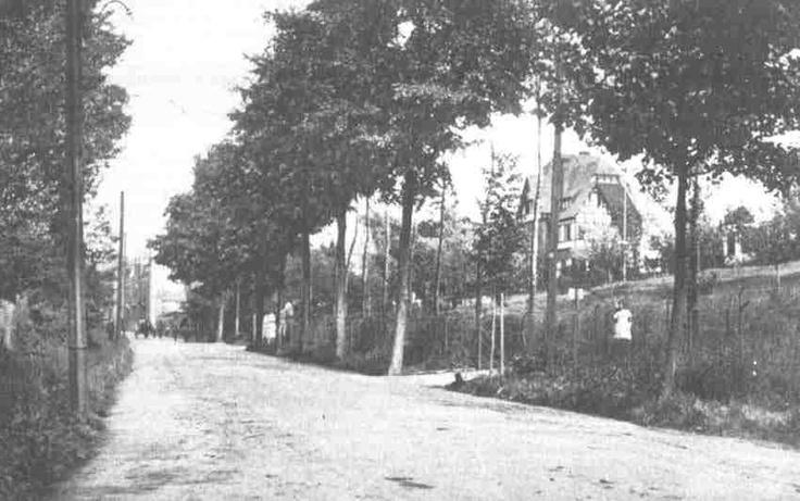 De Valkenburgerweg in Heerlen in 1915 met Villa Beukenhorst. Ger Prickaerts.