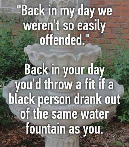 Back in your day you'd throw a fit if a black person drank out of the same water fountain as you