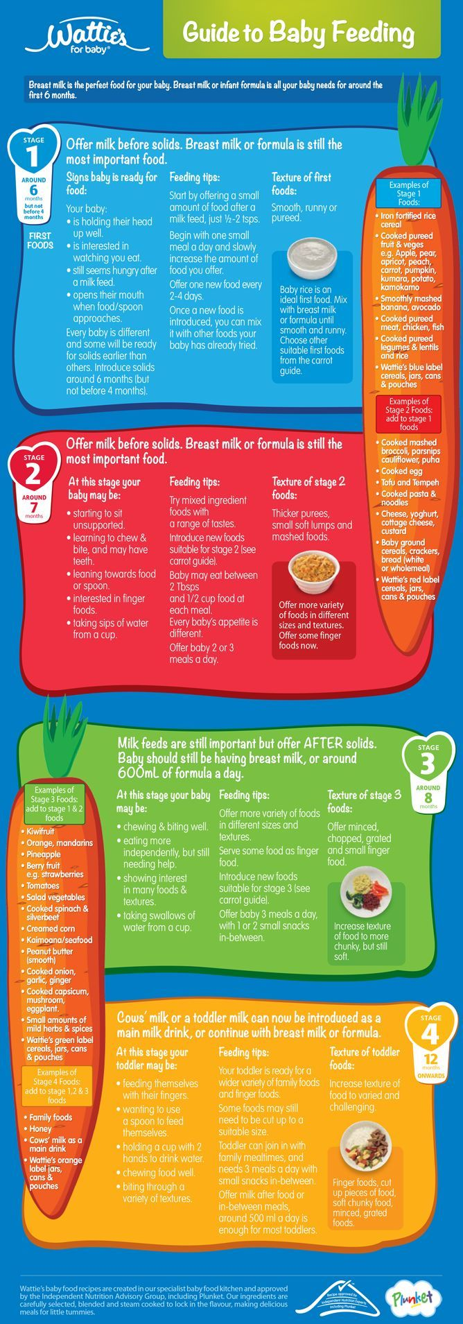 The 4 stages of baby food. What to feed your baby.