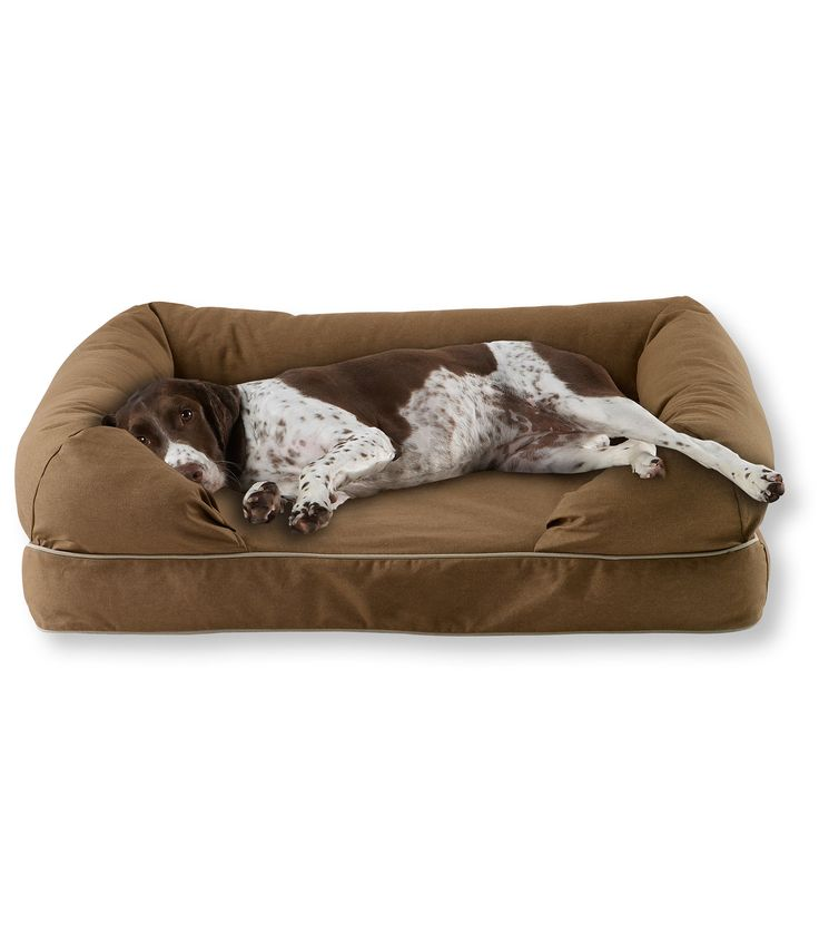 Large Ll Bean Therapeutic Dog Couch