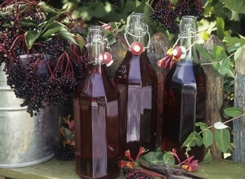 Bezinkový likér: Ingredience: bezinky 1 litr (prolisovaná šťáva), cukr krupice 1/2 kilogramu, skořice, hřebíček, vodka 1/2 litru (nebo slivovice).