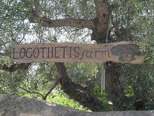 Zakynthos Zante Vasilikos village :: Logothetis farm
