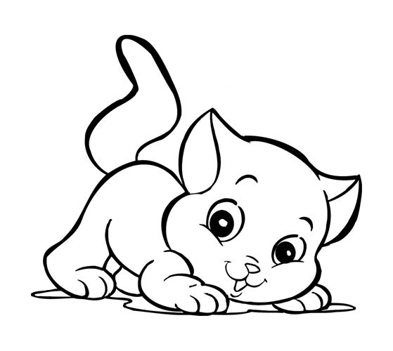 kitten coloring page for children