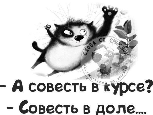 113808787_3821971_sovest096.jpg (604×455)