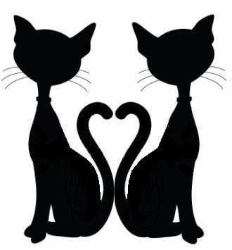 SILHOUETTE ~ Add a collar with a pendant (star and heart) ~ Make a pair of mismatched earrings ♥
