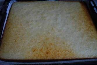 piškotové těsto s olejem  160 g cukr krupice  4 ks  vejce  4 lžíce  olej  160 g polohrubá mouka ..