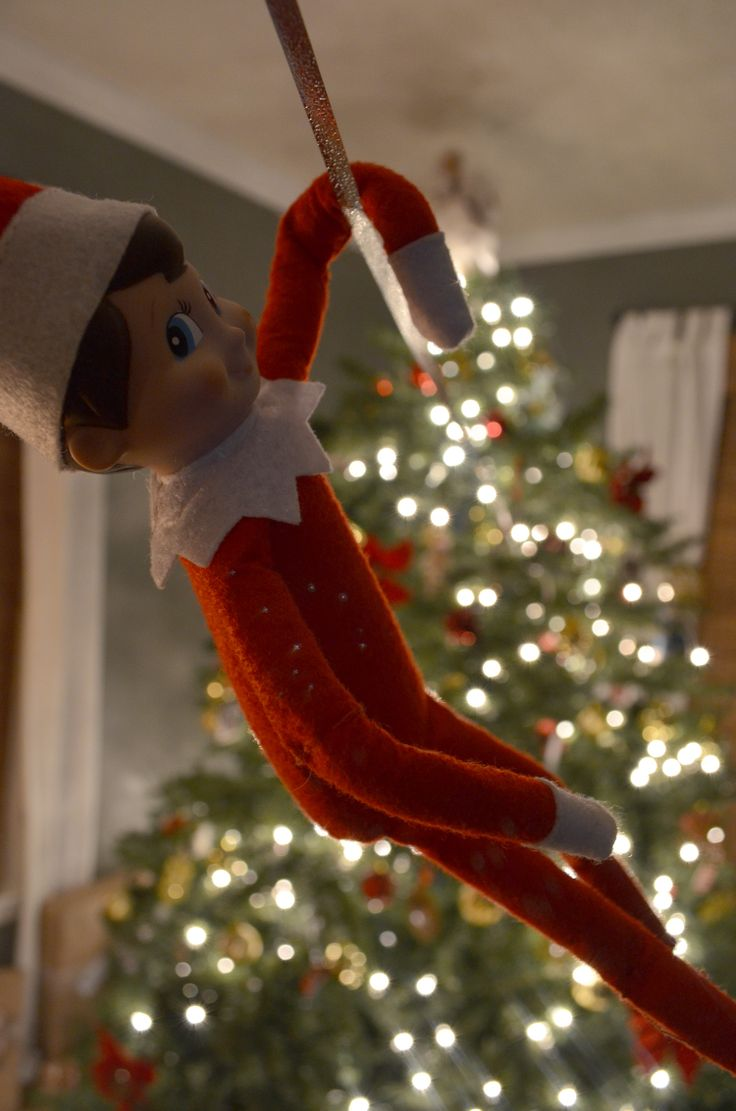 Yes, he did build a zipline from the Christmas tree over the holidays... #elfontheshelf