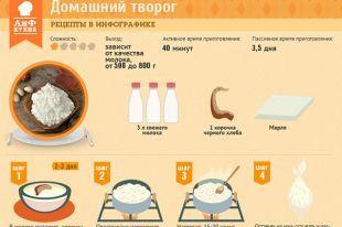 Домашний творог | Рецепты в инфографике | Кухня | Аргументы и Факты