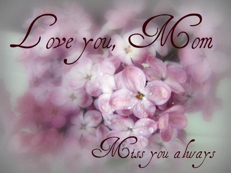 34259f373d85608dd3e2cf70103b4545 mothers day quotes happy mothers day mom get 20 miss my mom ideas on pinterest without signing up i miss,Miss You Mom Meme