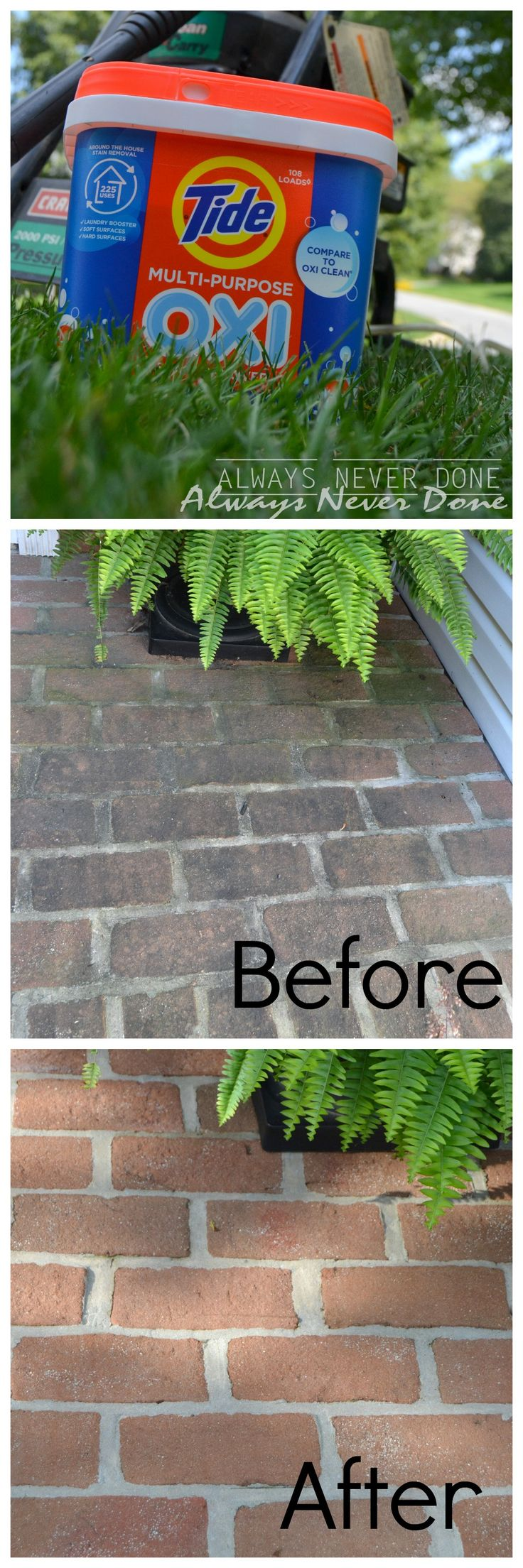 Cleaning Algea off your brick pathway with Tide Oxi (part of the Tide OXI…