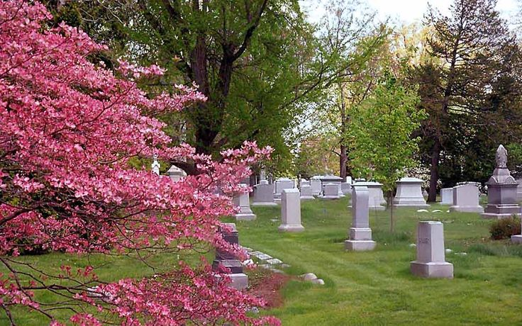 APRIL 10/16--What do you want your funeral notice to read? (And that photo!)By Linda Hammerschmid