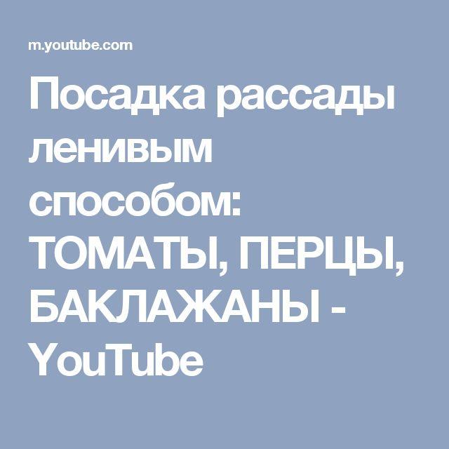 Посадка рассады ленивым способом: ТОМАТЫ, ПЕРЦЫ, БАКЛАЖАНЫ - YouTube