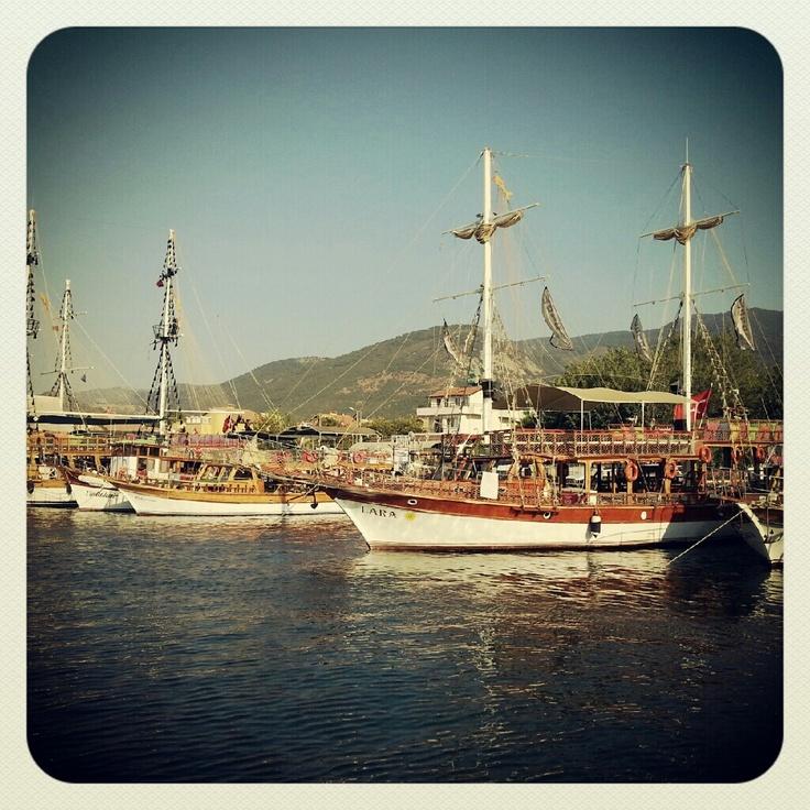 Davutlar / Kusadasi - Turkey: Life S Instances, Turkey, Davutlar