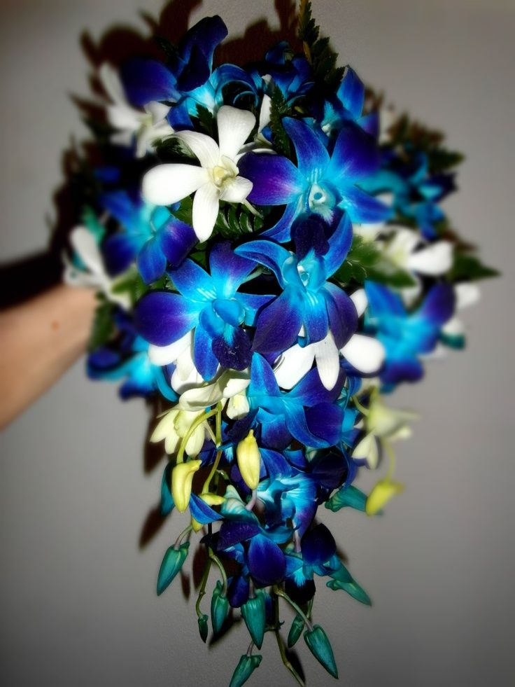 Peacock Wedding Flowers | Blue Singapore Orchid Wedding Flowers | Peacock Weddin