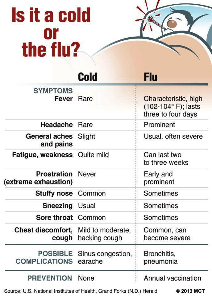 - cold or flu? -