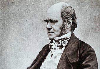 Чарльз Дарвин  vs обезьяны