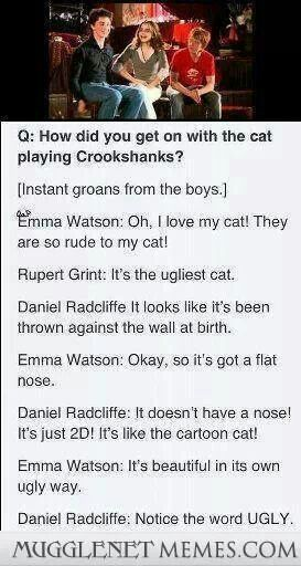 Just like in Harry Potter, Hermione is completely in love with the cat while the boys are just like -_- get that thing away from me NOW