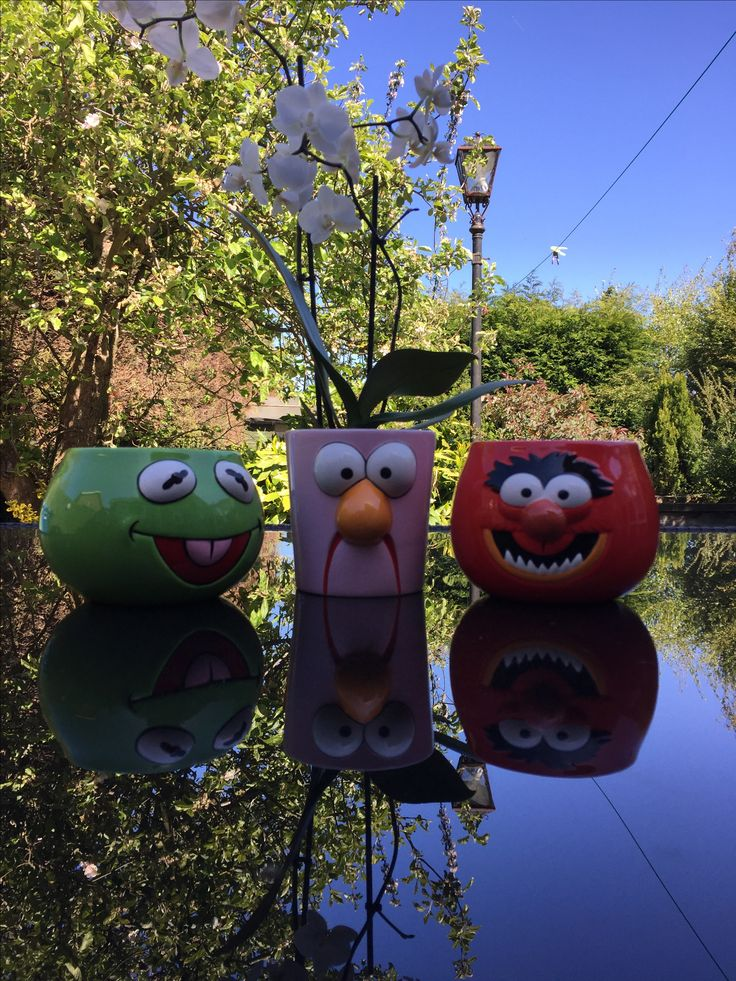 The muppets planters Kermit, Beaker and Animal