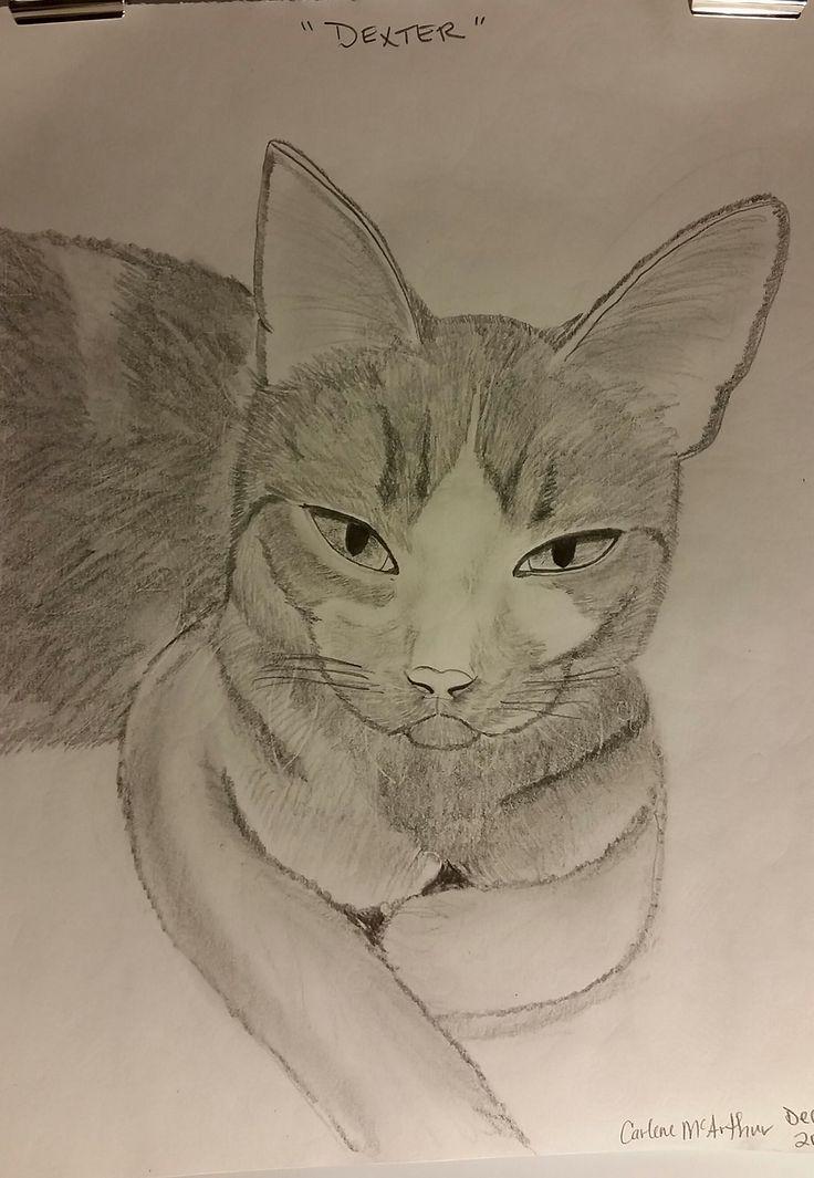 Dexter - pencil sketch