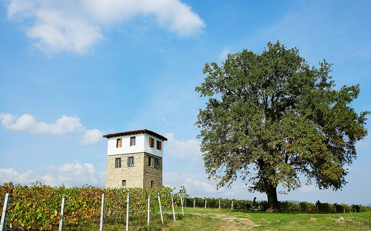 Northern Greece Wineries: Visiting the Source - Greece Is