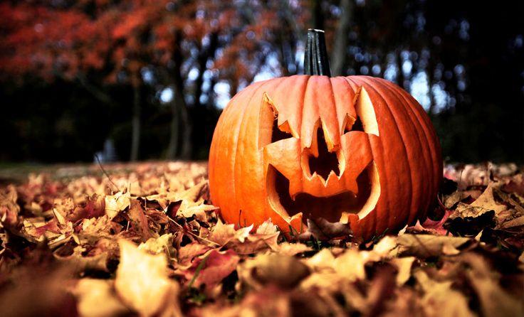 Cosa fare la serata e la notte di Halloween in Italia? Ecco qualche consiglio utile da Nord a Sud passando per i parchi divertimento più famosi