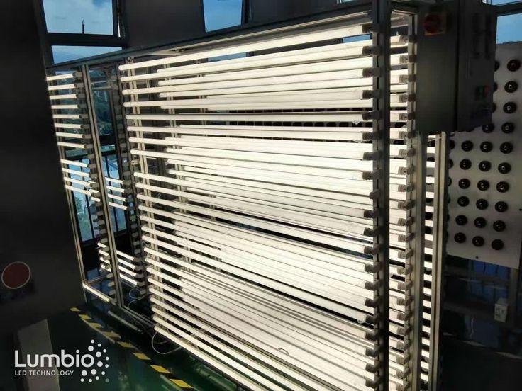 LED Tubes Lumbio®