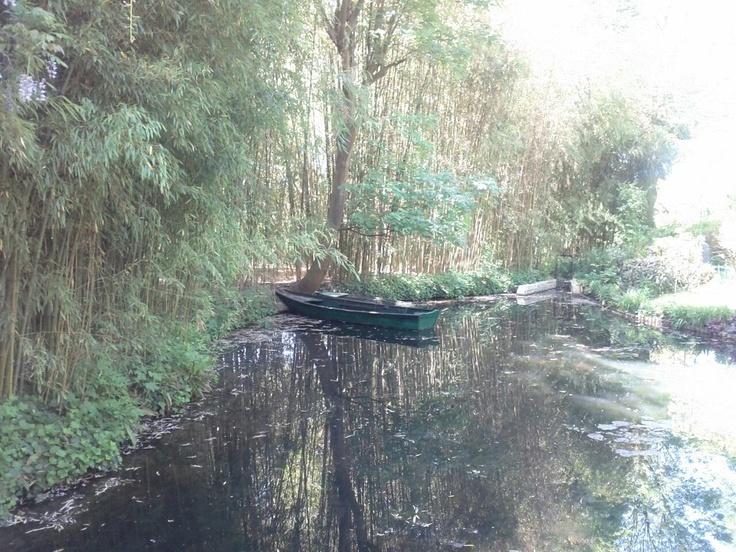 O jardim de Monet foi construído sobre as águas de um riacho.