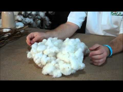 Overview of Floral Cotton products