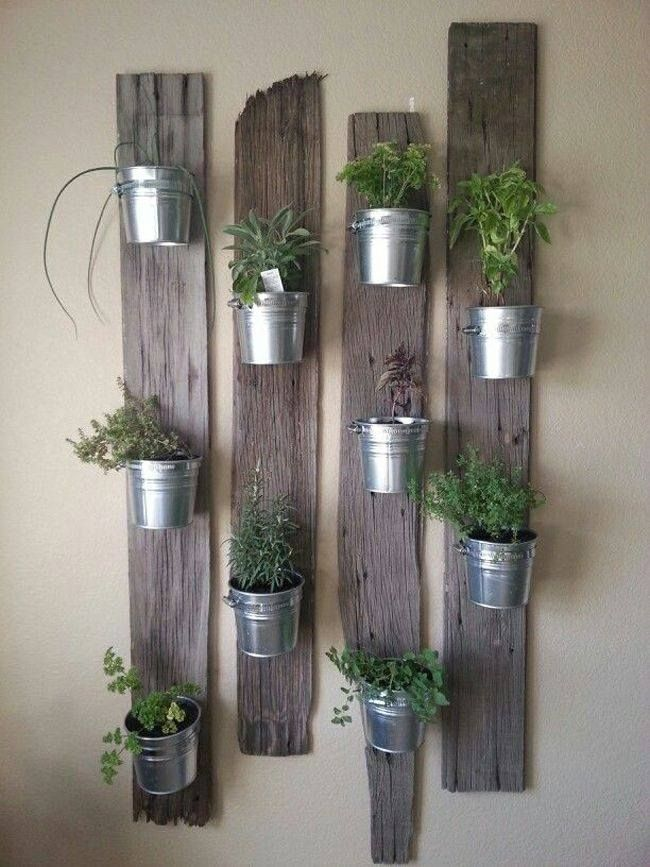 aromaticas en vertical
