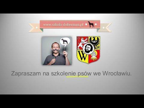 Szkolenie psów Wroclaw - nowoczesne i skuteczne szkolenie psa we Wrocław...