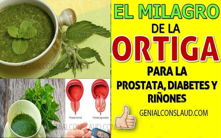 té de ortiga para la salud de la próstata