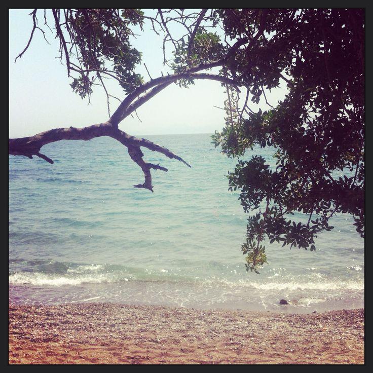 Hurma Cove, Bodrum Turkey