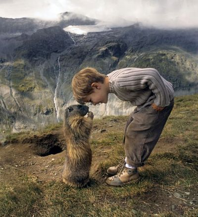 Full story: An 8-year-old boy in Austria has made friends with a local colony of marmots. It's the cutest thing ever. I can only imagine what amazing things he is learning about the world.