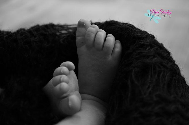 Baby Toes, Newborn, Black & White Photography