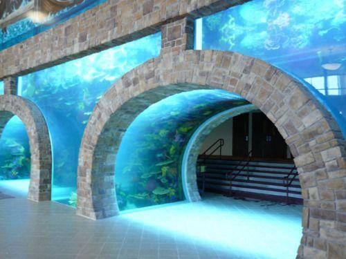 fish tank-- 75,000-gallon, salt-water aquarium greets worshipers at the Inspiring Body of Christ ...