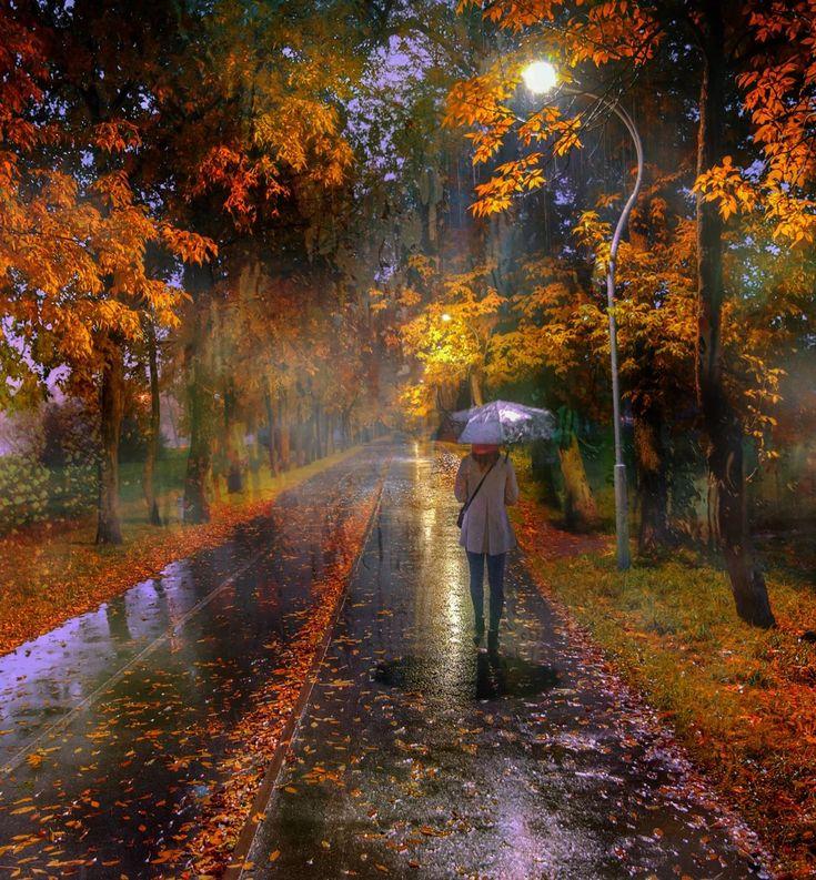 Открытки дождливой осени, прекрасным понедельником фото