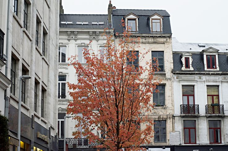 POSTCARDS FROM BRUSSELS_1